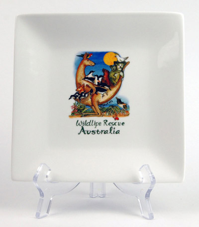 CSQP144: Wildlife Rescue Square Platter